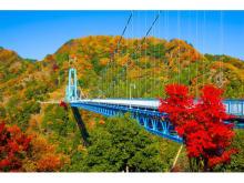 11月中旬~下旬が紅葉の見頃!アクティビティも楽しめる「竜神大吊橋」