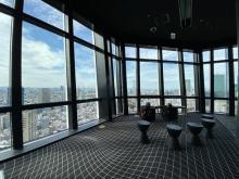 営業開始前の展望台へ!東京タワーで天空を楽しむ茶道体験「朝茶の湯」開催