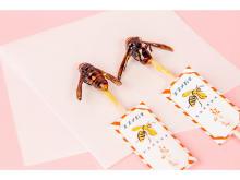 """サスティナブルな""""昆虫食""""を楽しむ「虫グルメフェスVol.0」開催"""