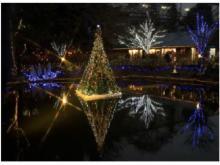 「京王フローラルガーデン アンジェ」のクリスマスイベントに注目!