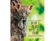 魅力的な写真や貴重な情報を網羅!『世界で一番美しい野生ネコ図鑑』発売