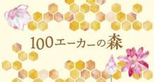 国産はちみつ×チョコのスイーツブランドが誕生。名古屋、東京のバレンタインイベントに期間限定でお目見え