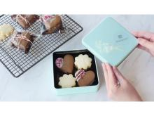 TOMIZ × macaroni!バレンタインに最適なクッキーの手作りキットが登場