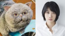 『おじさまと猫』ふくまるとそっくりな猫・マリン役で松本穂香が声の出演