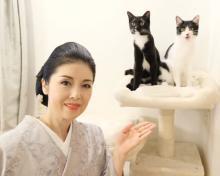"""藤あや子、使命感としての""""保護猫への想い""""「覚悟を持って一生寄り添って」"""