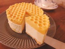 蜂蜜とチーズの相性が抜群!ハチの巣みたいな「純粋蜂蜜レアチーズケーキ」
