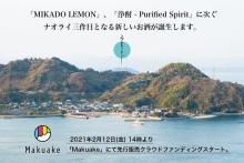 """日本酒由来の""""浄酎""""とレモンで造る熟成酒『琥珀浄酎』がマクアケで先行販売"""