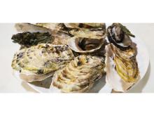 今が旬!日本有数の牡蠣の産地「伊勢志摩鳥羽」の牡蠣を自宅で味わおう
