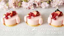 ほんのりピンクの春色ラインナップ。神戸のパティスリー「TOOTH TOOTH」に心が弾む桜ケーキがお目見え