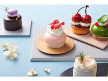 """日本の春を愛でる!「HIBIKA」から色とりどりの""""春のケーキ""""が登場"""