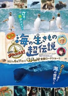 『ダーウィンが来た!』映画化第3弾 海の生き物の世界にレッツ・ギョー
