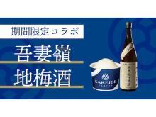 「SAKEICE」から岩手・吾妻嶺酒造の梅酒を使用した新感覚アイスが登場!