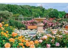 京成バラ園で「スプリングフェスティバル It's so in Bloom!」が開催