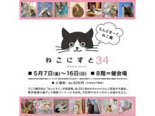 猫好き必見!そごう横浜店で「ねこにすと34 -らんどまーくねこ篇-」開催中