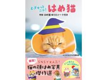 """すぐに使える""""ぬりえ型紙""""付き!可愛くて面白い「はめ猫」写真集が発売中"""