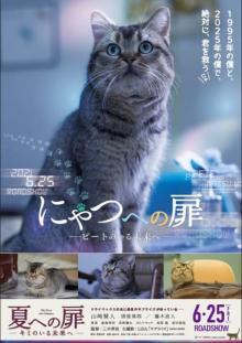 山崎賢人主演『夏への扉』にゃんともかわいい<ピート>版特別ポスター