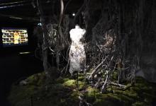 宇多田ヒカル新曲「PINK BLOOD」MVの世界観を再現 展示会6・5より開始、衣装&撮影セットなど