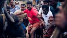 牛追い騒動が人間同士の醜い争いへ インド映画『ジャッリカットゥ』予告編