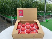 日本郵便オリジナル商品「さやまるプロジェクトの朝採り完熟トマト」6/15から販売開始