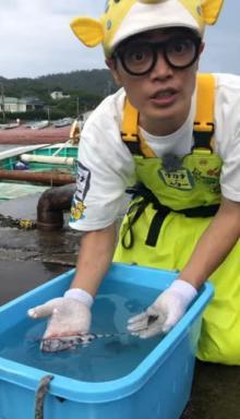 さかなクン「極めて貴重」な魚発見 千葉・館山で「ユキフリソデウオ」と初対面