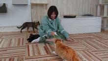 """真木よう子""""クール""""一転、猫と戯れ表情ゆるむ「実はネコ派」 相葉雅紀も笑顔に"""