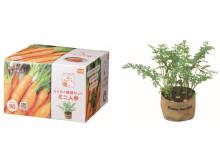 初心者でも安心!家庭菜園を気軽に楽しめる人気の栽培セットに8品種が仲間入り