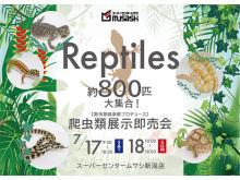 専門誌「ビバリウムガイド」編集長も登場!約800匹の「爬虫類展示即売会」新潟で開催