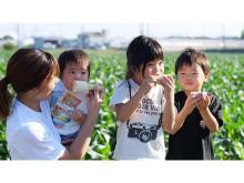 石井食品とロックファーム京都、規格外品「京都舞コーン」の新たな価値を創造