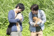 中川大志、「犬猫たちが救いだった」 『犬部!』メイキング映像
