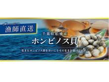 漁師直送 獲れたて新鮮!千葉県船橋産「ホンビノス貝」 販売開始
