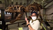 兵動大樹、ティラノサウルスの全身復元骨格に大興奮『全然迫力が違う!』