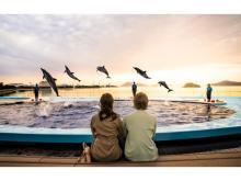 四国水族館が夏休み期間中、夜の水族館「Night Scapeこがねいろ2021」を開催!