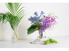 「HitoHana」が猛暑でも安心の「お花の定期便」クール便サービスを開始