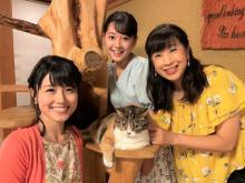 カンテレ関純子アナ&中島めぐみアナ&谷元星奈アナ、猫好きの祭典アンバサダーに「にゃんこ好きは集まるにゃあ!」