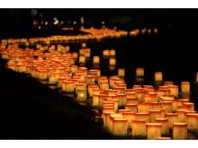 「第34回 九頭竜フェスティバル 永平寺大燈籠ながし」がYouTubeでLIVE配信!