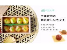 切っても巻いても楽しめる!「紀州梅肉シート 梅包み」の先行発売がMakuakeで開始