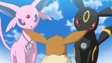 アニメ『ポケモン』エーフィ&ブラッキー登場! コハルに瓜二つのハルヒも 【第79話あらすじ】