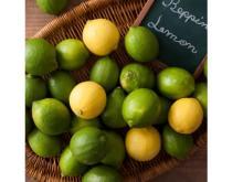 料理家・栗原心平氏おすすめの皮まで丸ごと食べられる「べっぴんレモン」が再販開始
