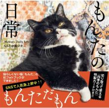 「癒やされる」とSNSで話題の猫・もんたのフォトブックが「写真集」5位