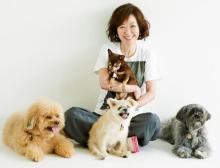 """動物愛護にまい進、浅田美代子が""""本業""""を頑張る理由「『あの人、最近見ないね』より活躍したほうが言葉に強さが出る」"""
