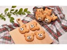 誰でも簡単&かわいく作れる!富澤商店から「くまのオートミールクッキーキット」発売