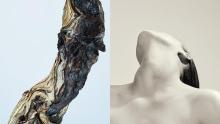 """""""植物の進化""""を表現したジェンダーレスな香りも魅力。新ブランド「D.W.M.」のシンプルケアですこやかな肌へ"""