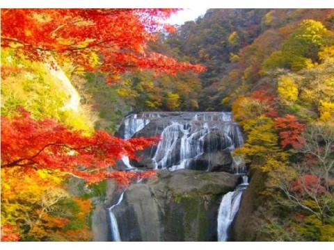 今年の紅葉は秋が1年で一番美しい滝で楽しむのはいかが?トリップアドバイザーが日本の滝トップ20を発表!!