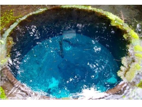 こんなキレイな水は見たことがない!!一度は訪れたい日本の湧水・名水ランクに熊本の水源が1・2位を独占