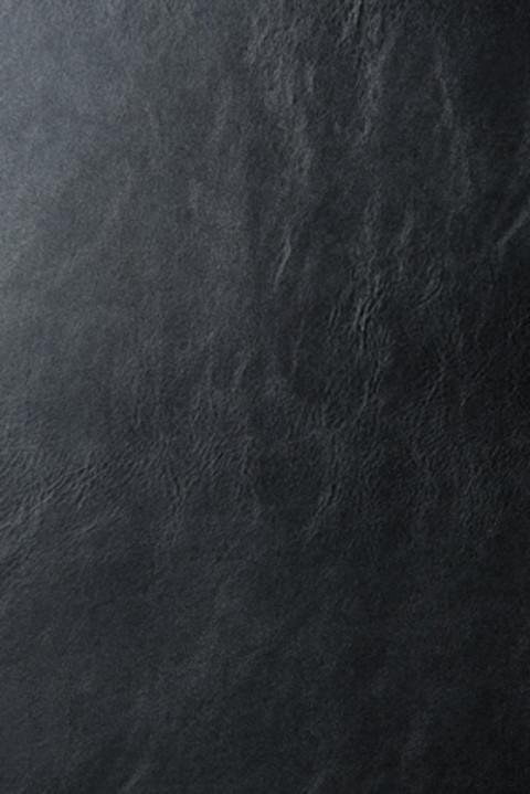アレクサ・チャンとコラボ!Nails Incの新ファブリックネイル6色