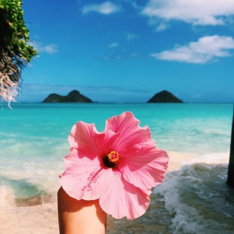 """トロピカルな夏ネイルには、ハワイのシンボル""""ハイビスカス柄""""を取り入れたい!"""