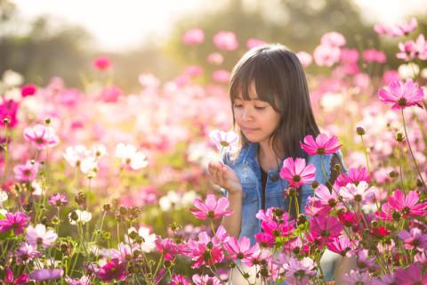 Pediatrics West | Allergy Tips - Pediatrics West