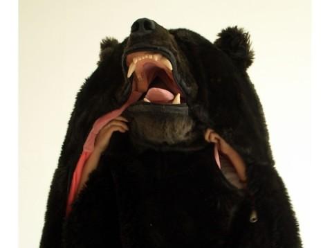 The-Great-Sleeping-Bear-2