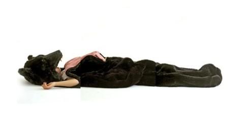The-Great-Sleeping-Bear-4