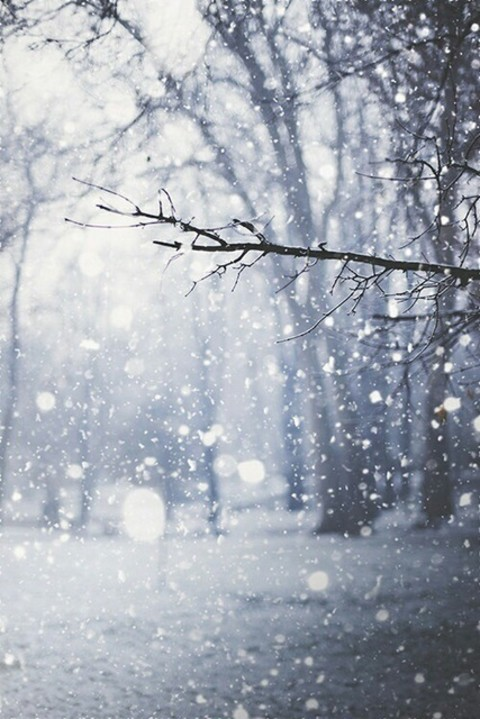 The snow is sometimes inspiring by kimberly | We Heart It